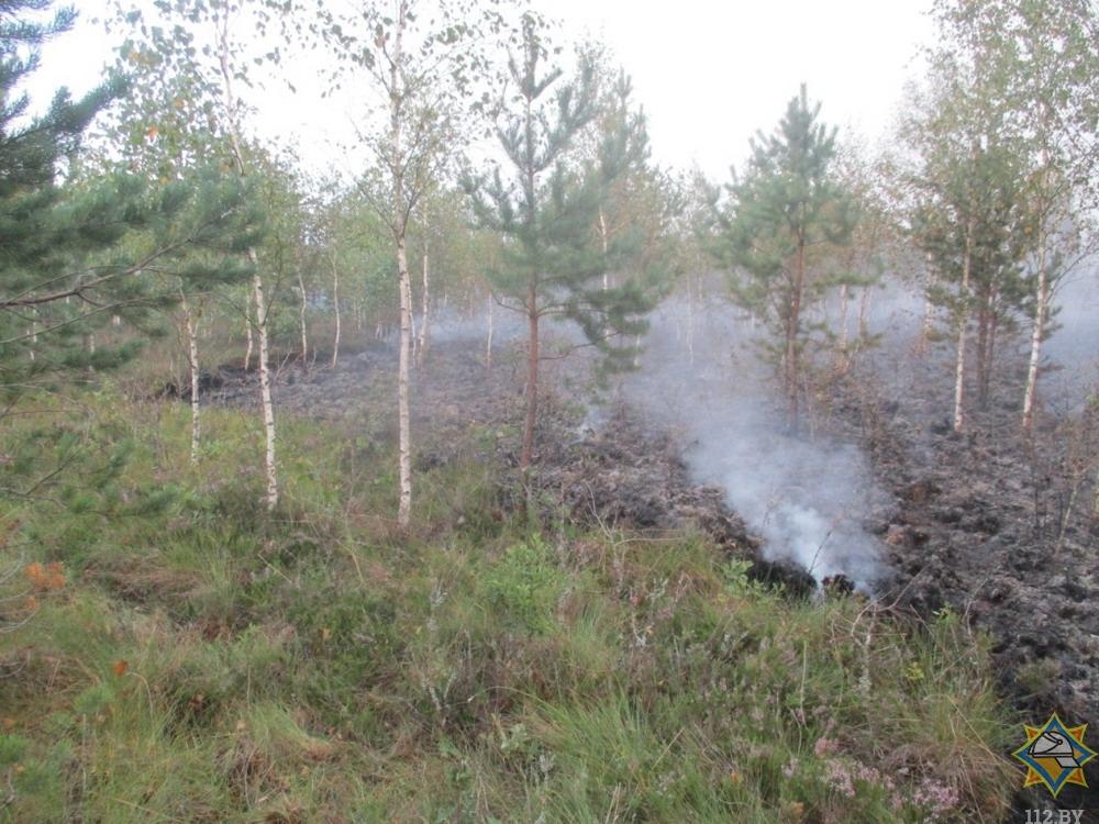 Пожар на торфянике в Лидском районе. Фото mchs.gov.by