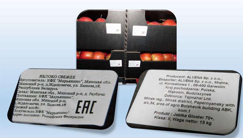 В России уничтожили почти 20 тонн ввезенных из Беларуси яблок