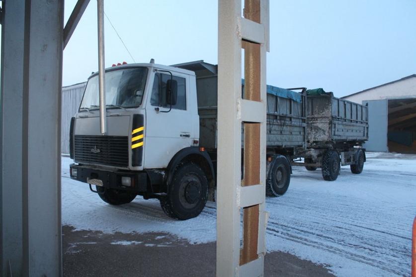 В Щучинском районе агроном и завскладом пытались похитить 20 тонн зерна на 21 тыс. рублей