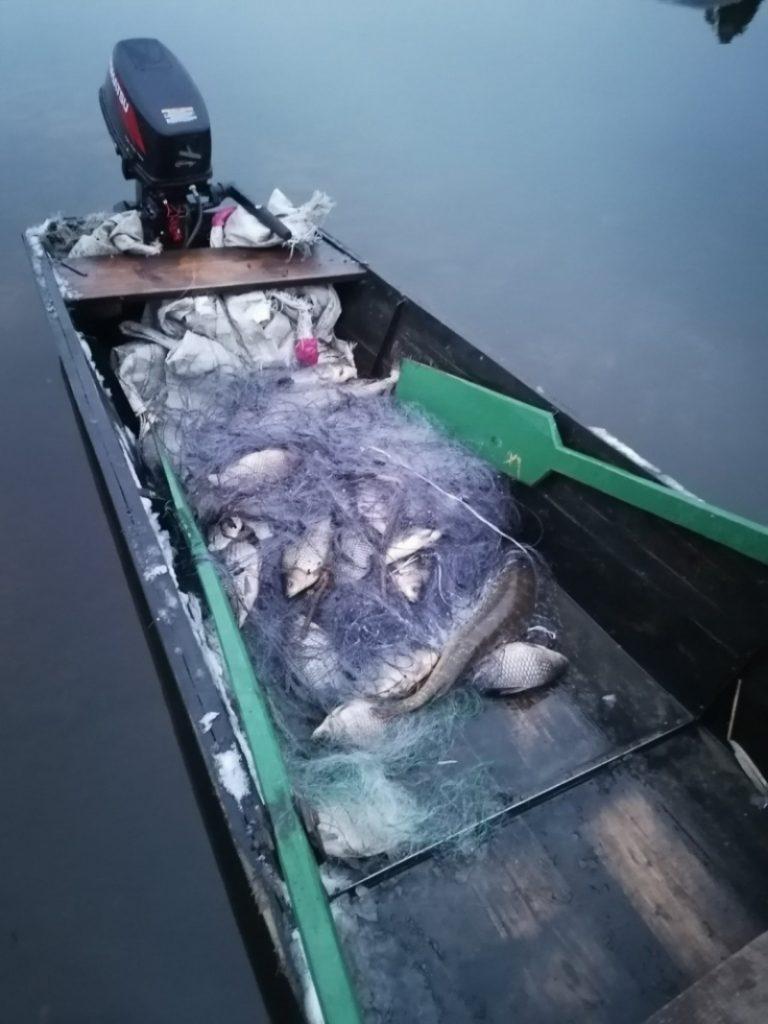 В Житковичском районе поймали браконьеров с 230 кг рыбы