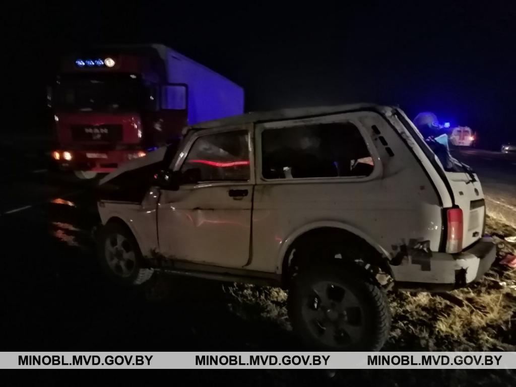 """Три человека пострадали при столкновении """"Нивы"""" и фуры в Минском районе"""