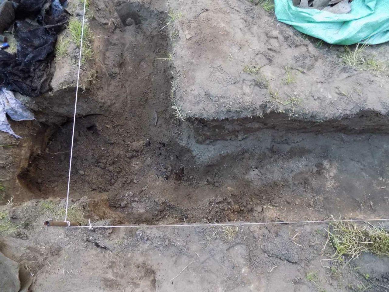Житель Бобруйска обнаружил останки женщины во дворе
