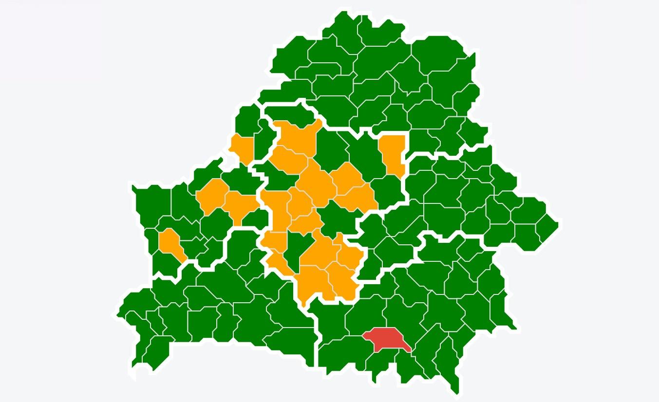 Посещение лесов ограничено в 20 районах Беларуси